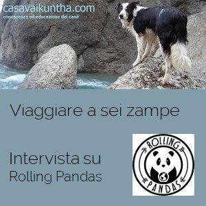 """Intervista su Rolling Pandas """"Racconti in valigia: viaggiare a sei zampe"""""""