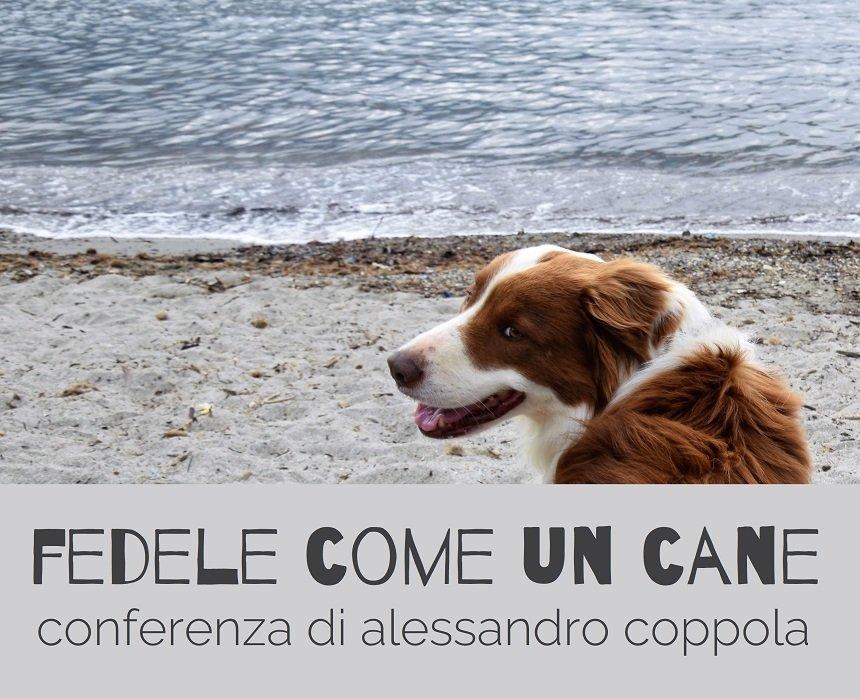 conferenza fedele come un cane