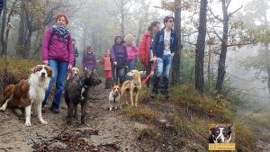 casavaikuntha-stage-con-il-mio-cane-senza-paura10