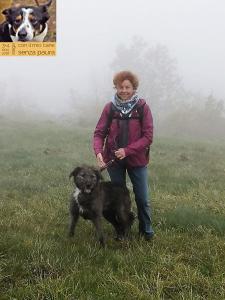 casavaikuntha-stage-con-il-mio-cane-senza-paura3