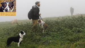 casavaikuntha-stage-con-il-mio-cane-senza-paura5