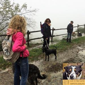 casavaikuntha-stage-con-il-mio-cane-senza-paura6