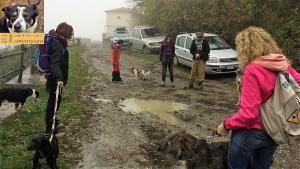 casavaikuntha-stage-con-il-mio-cane-senza-paura8