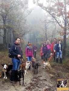 casavaikuntha-stage-con-il-mio-cane-senza-paura9