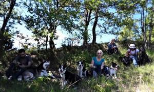 casavaikuntha-stage-in-viaggio-con-il-cane1