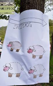 dimostrazione-sheepdog-casavaikuntha7