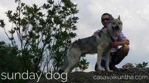 dog-trekking-lorenzo-e-jaguard