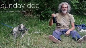 dog-trekking-tullio-bea-e-vino