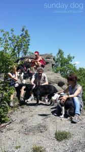 dog-trekking51