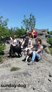 dog-trekking52