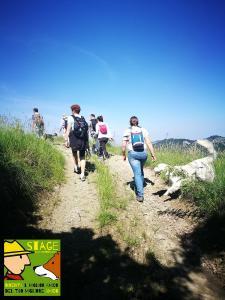 stage-casavaikuntha-dog-trekking2