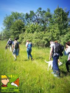 stage-casavaikuntha-dog-trekking3