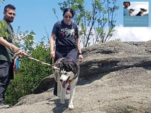 stage-il-cane-e-gli-orizzonti-della-fiducia-casavaikuntha26