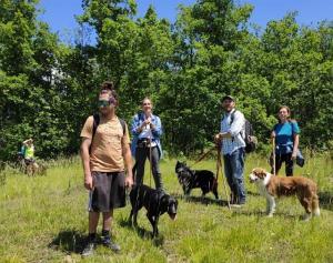 stage-in-viaggio-con-il-cane-20-21-giugno-2020-casavaikuntha1