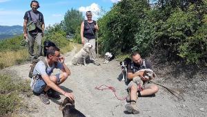 stage-in-viaggio-con-il-cane-casavaikuntha-dog-training10