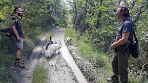 stage-in-viaggio-con-il-cane-casavaikuntha-dog-training9