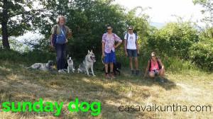 sunday-dog-dog-trekking-10-luglio-2016
